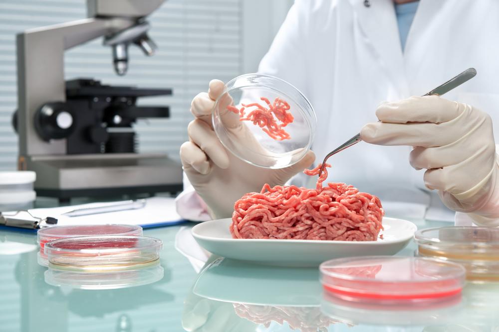 Kontrola mäsa